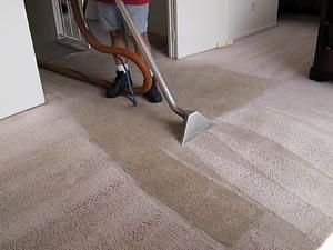 The Correct way of using a carpet steam cleaner-thatviralfeedcdn