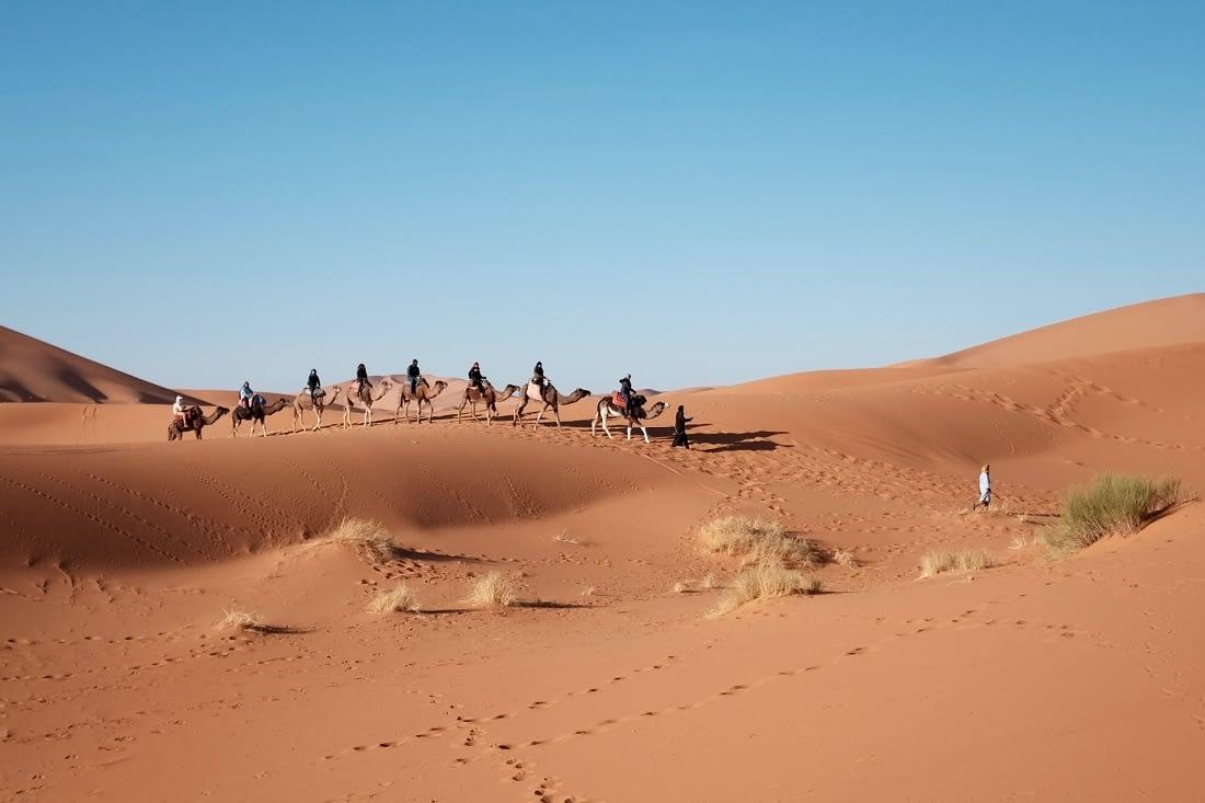 Spectacular Desert